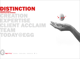 Egg Strategy website image