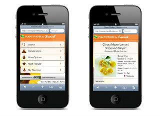 Sunset Plant Finder Application Design image