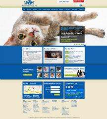 MVS Hospital Website image