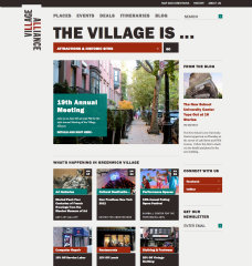 The Village Alliance image