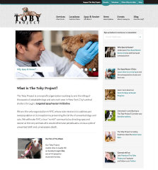 The Toby Project image
