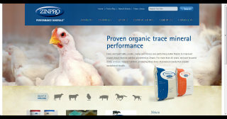 Performance in Trace Minerals image