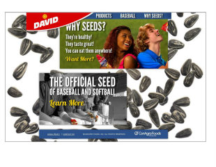 David Seeds Site Redesign image