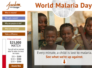 Freedom from Hunger: World Malaria Day image