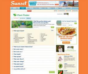 Sunset Website Redesign image