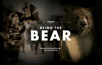 Being the bear image
