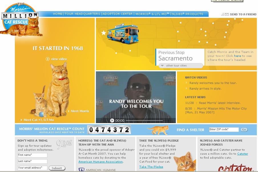 9 Lives Million Cat Rescue image