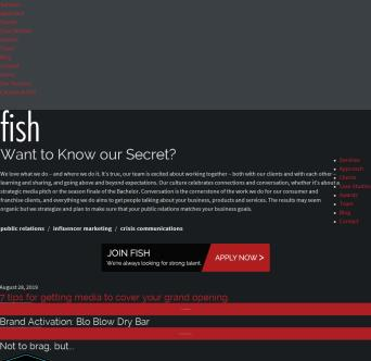 Fish Consulting Company Website image