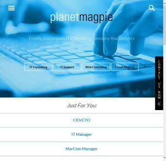 PlanetMagpie IT Consulting image