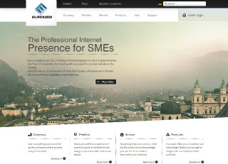 Corporate Website  image