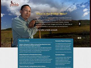 The Pebble Partnership image