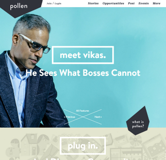 PollenMidwest.org image