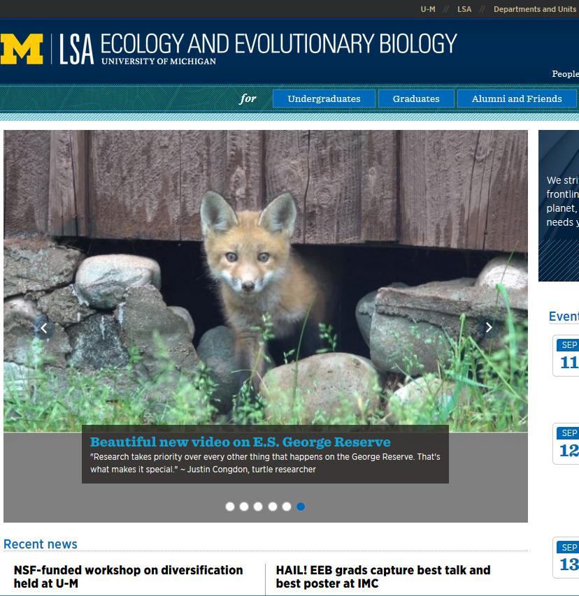 University of Michigan Ecology & Evolutionary Biology Website image