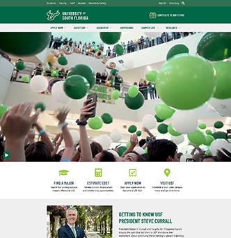University of South Florida Main Website Redesign image