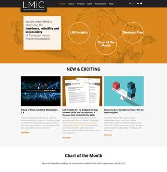 LMIC - Labour Market Information Council image