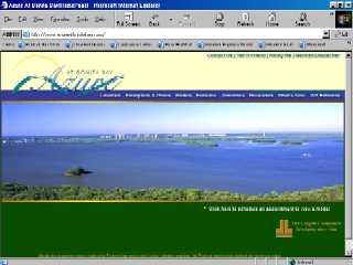 Azure at Bonita Bay image